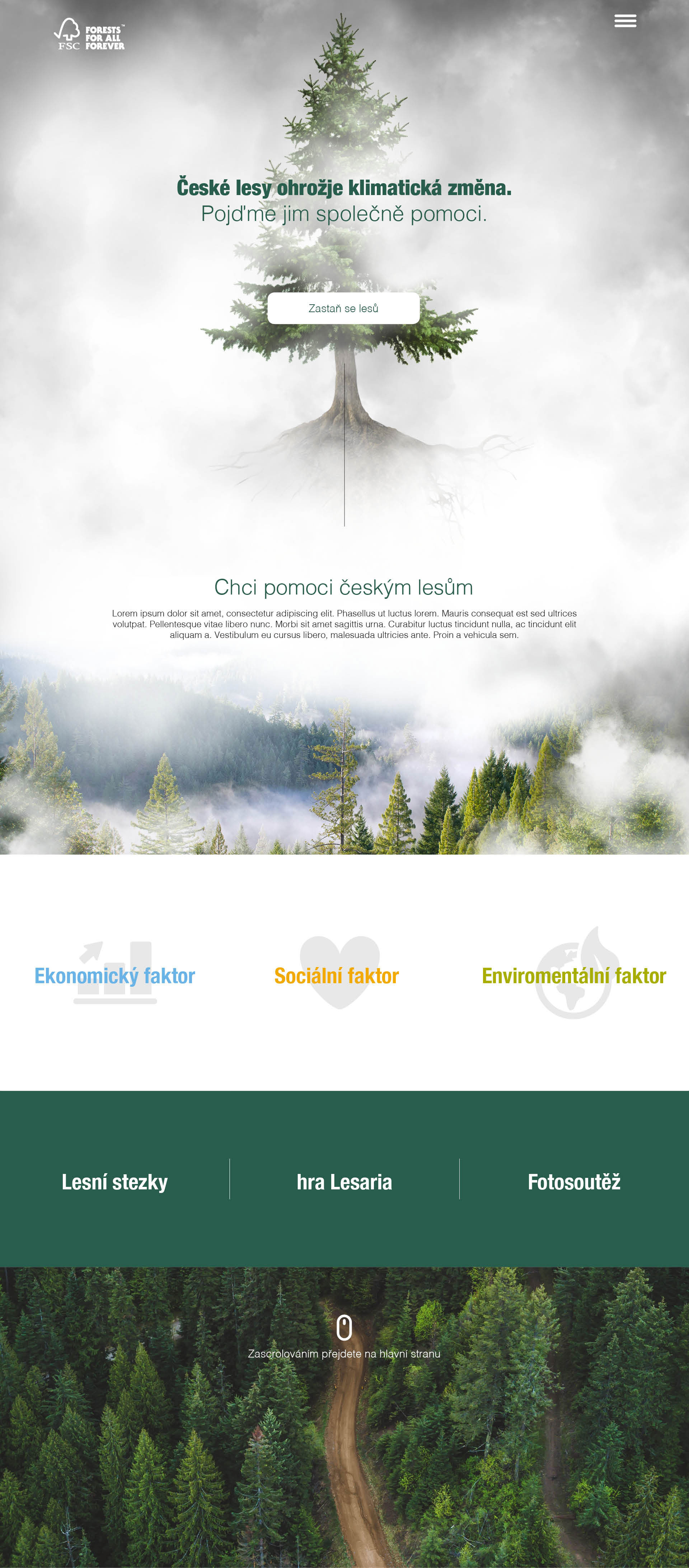 FSC Poznej dřevo - realizace, Webdesign