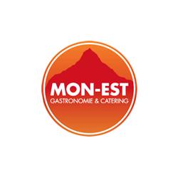 monest_brno_logo