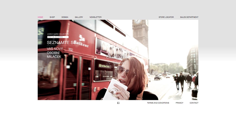 mylovelychameleon.com - realizace, Webdesign