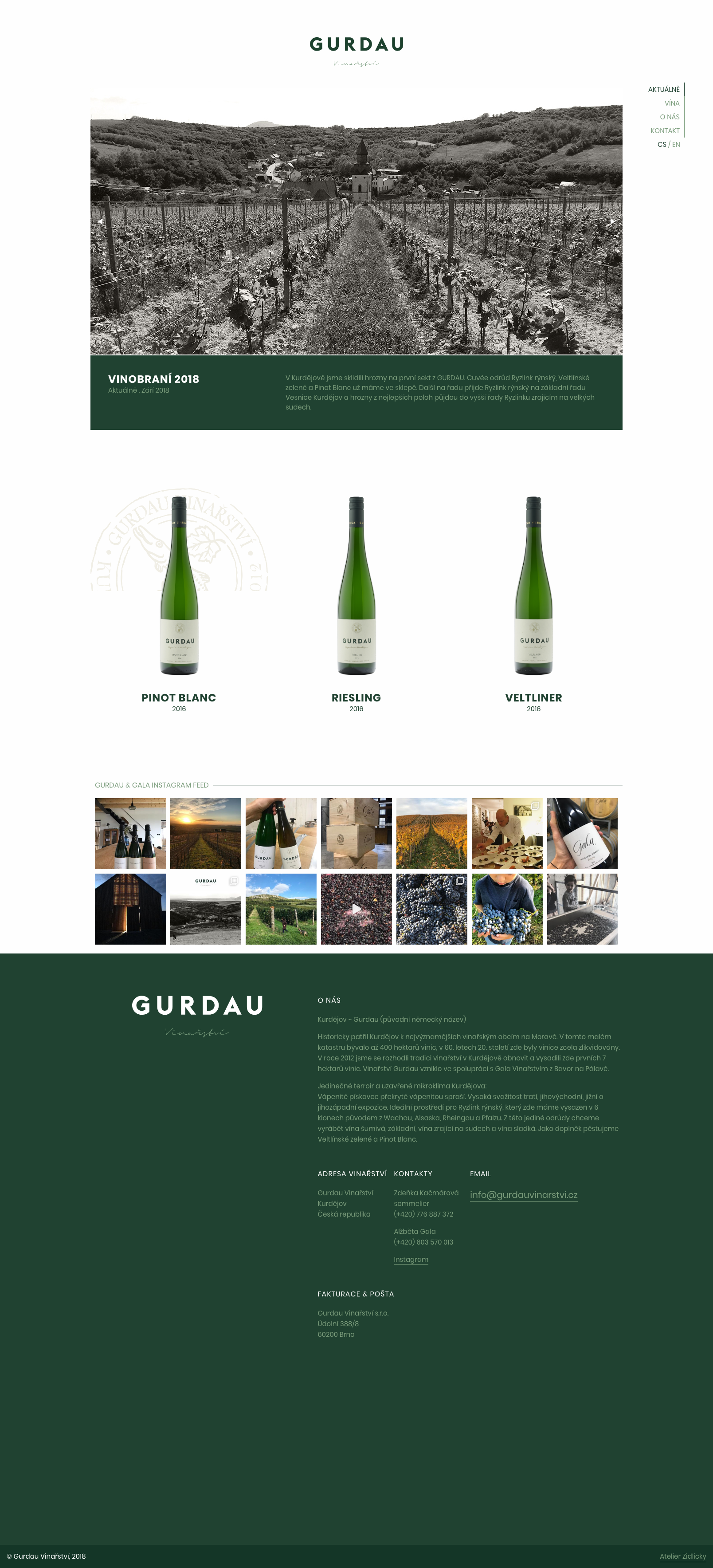 Gurdau Vinařství - realizace, Webdesign