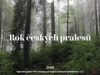 Kalendář pralesů ČR