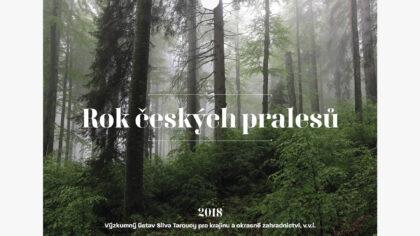 Kalendář pralesů ČR - realizace, Logo&Print
