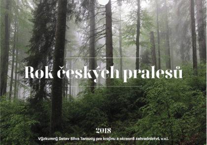 Realizace Logo&Tisk Kalendář pralesů ČR